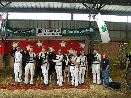 Grenville-Dairy-Creamers.jpg