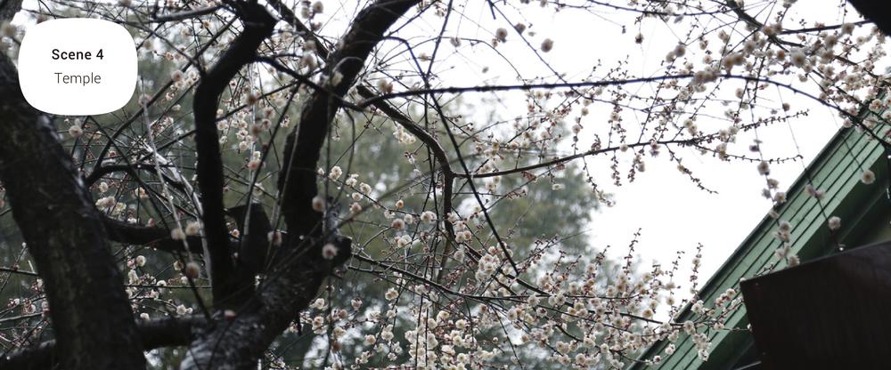 マナカWEB-002-03.jpg
