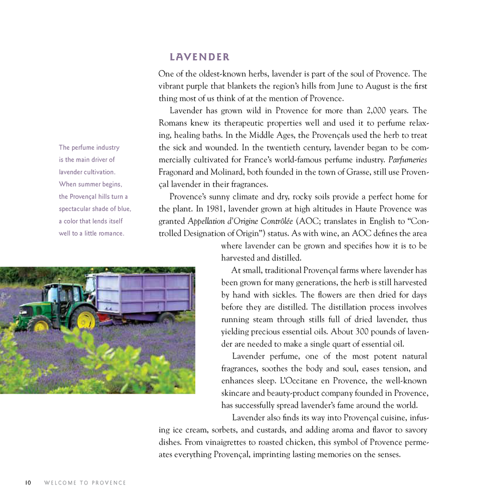 Provence Food and Wine_Page_08.png