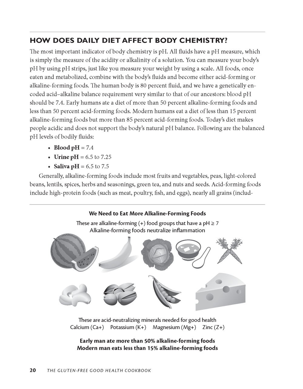 Gluten-Free Good Health Cookbook_Page_09.png