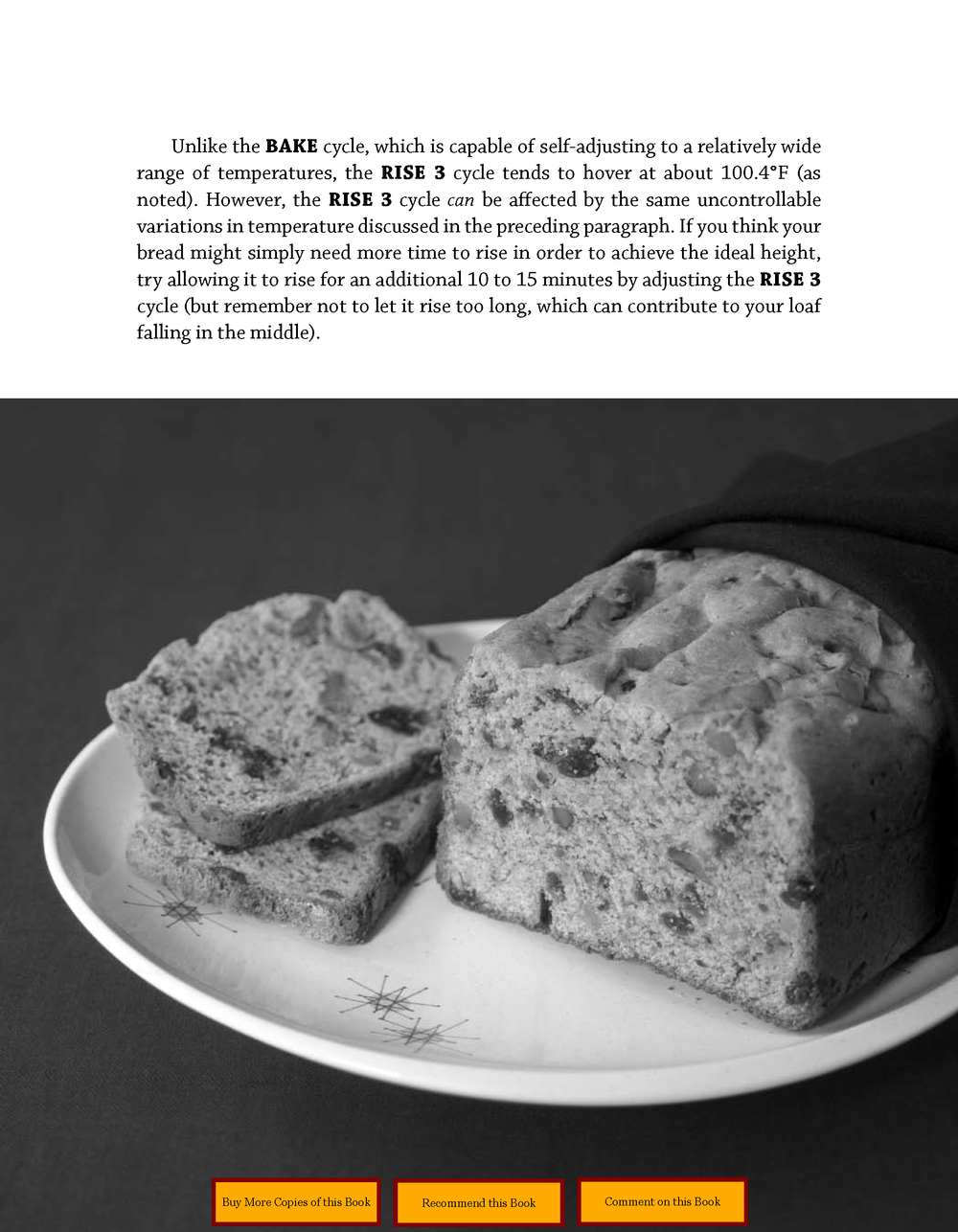 Gluten-Free Bread Machine_Page_09.png