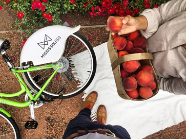 CAPTION: Bike rides, good friends, picnics in the park and farmer's market peaches. All the ingredients for a wonderful summer afternoon.