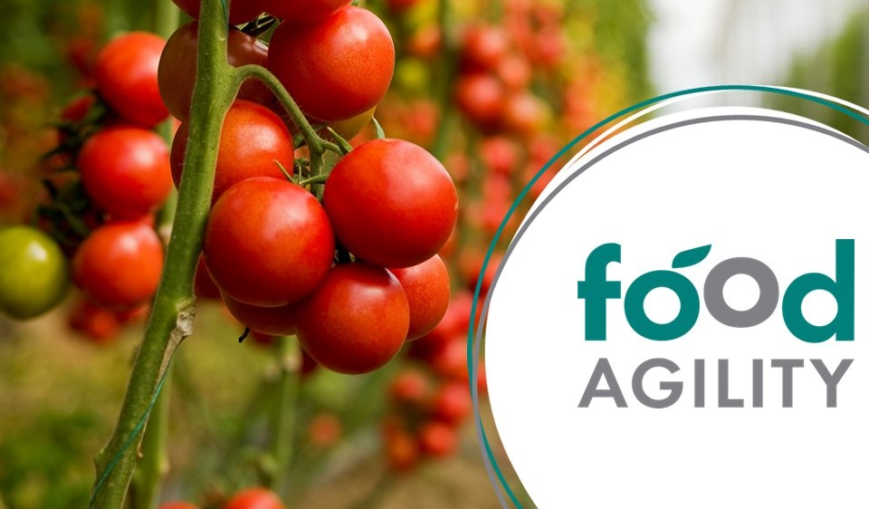 The Yield joins Food Agility consortium