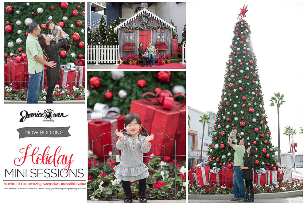 janiceowenphotography_HolidayMiniSession.jpg