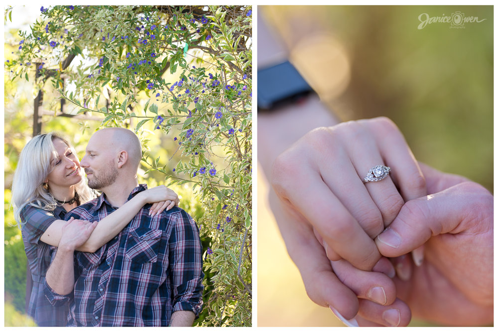 janiceowenphotography_engaged25.jpg