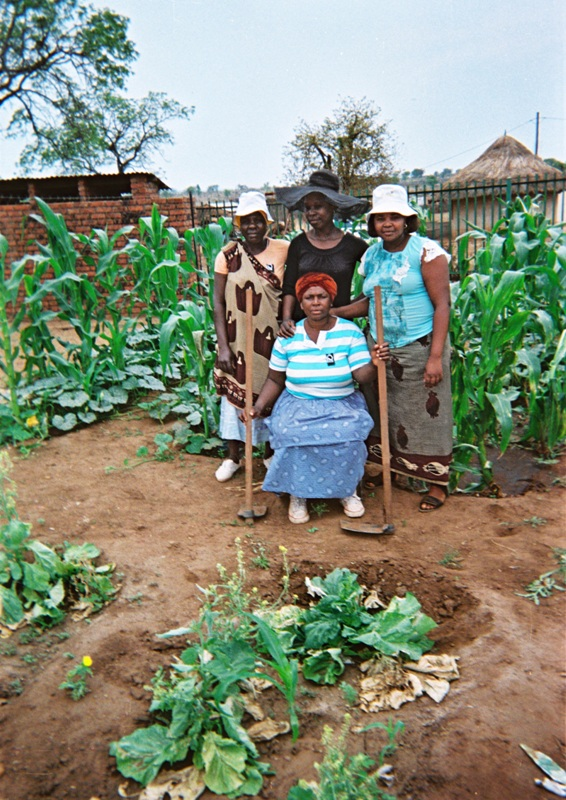 Growing vegetables for the orphans at the village.