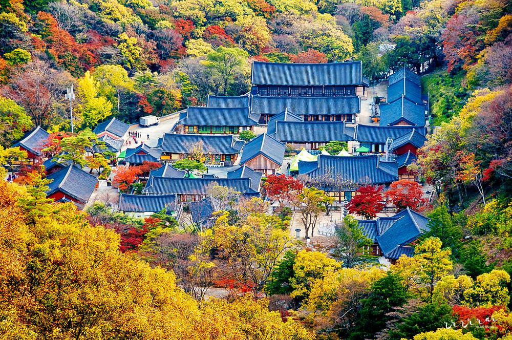 120915-seoul-searching-34.jpg
