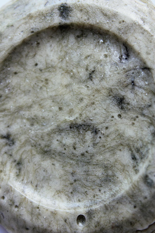 algaebioplastic_texture