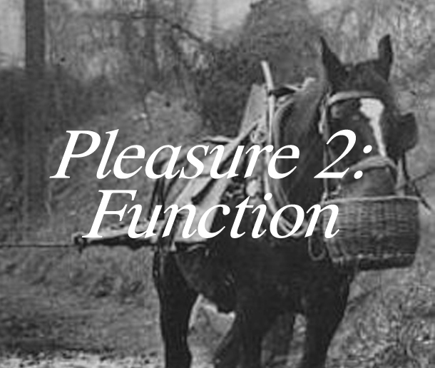 functionpleasure