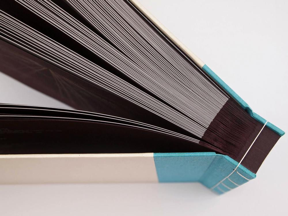 Gebrochene Poesie Uckermark - Kunstbuch – Manuela Busch und Fran Wiemeyer – Vorzugsausgabe Siebdruck