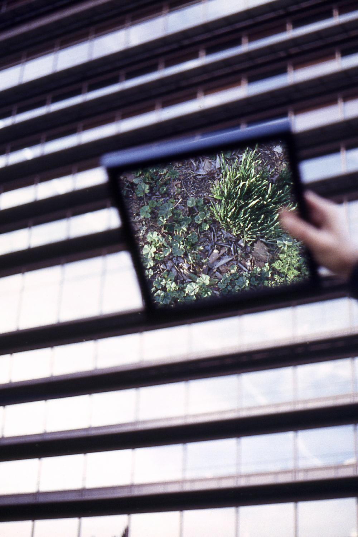 12 Pictures Serie. Digital Print, Hahnemühle Paper. Dimensions: 52 cm x 42 cm