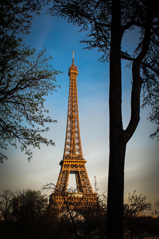 Paris-370.jpg