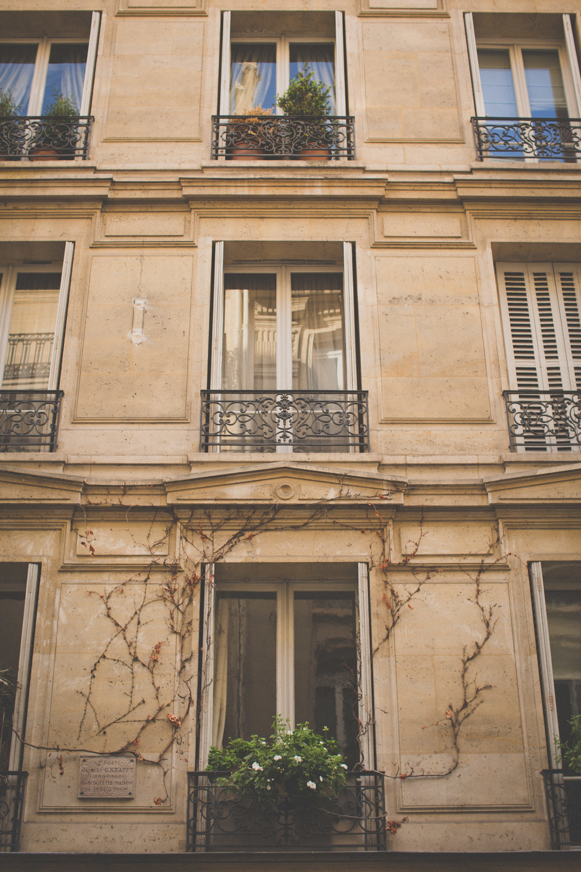 Paris-590.jpg