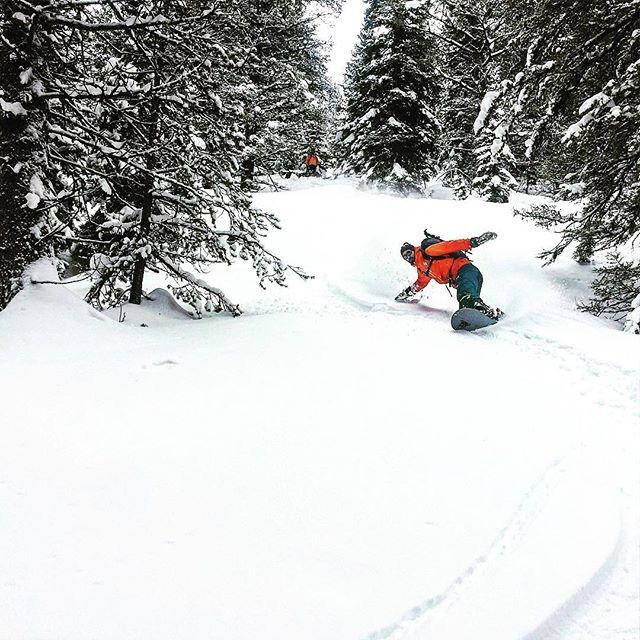 Regram: Graham on the slopes!( @_koala_eyes_ ) 🏂