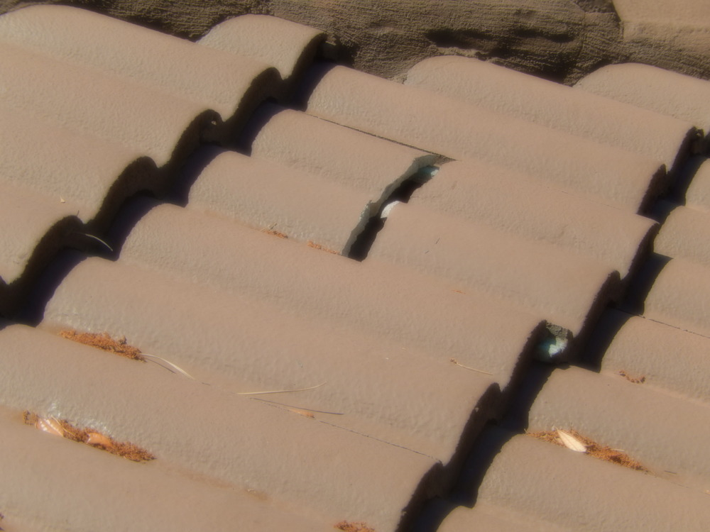 Cracked Roof Tile