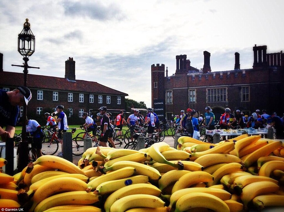 How many bananas do 20,000 cyclists eat over 100 miles?