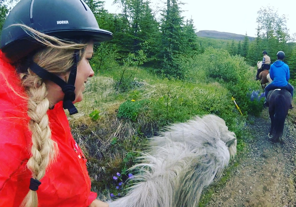 Sophie Radcliffe Discover The World East Iceland Horse Riding