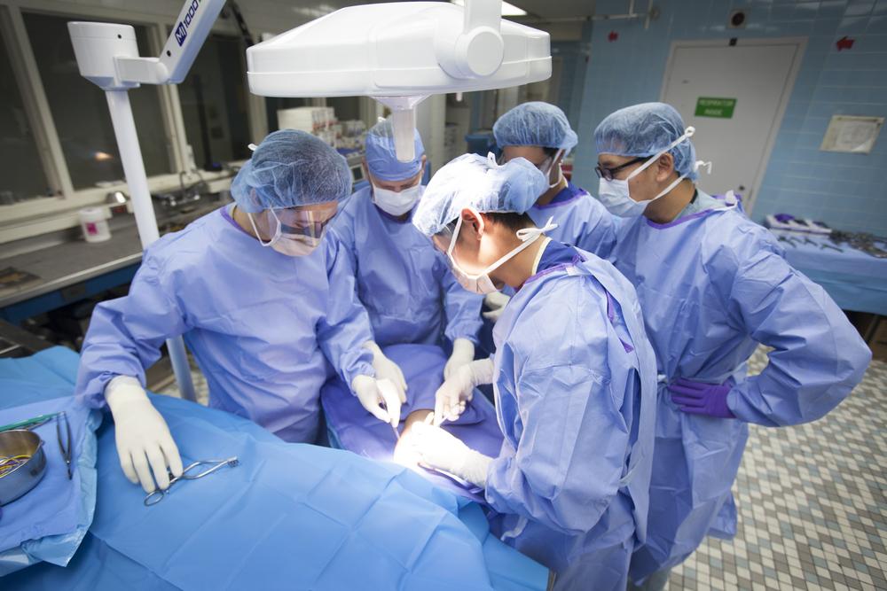 Surgeons_Cadaver1.jpg