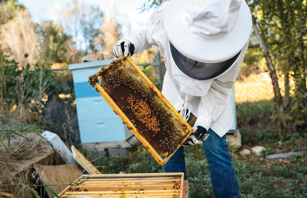 Natural-Honey-Beekeeper