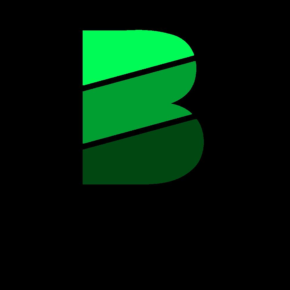 Brisan-Logo.png