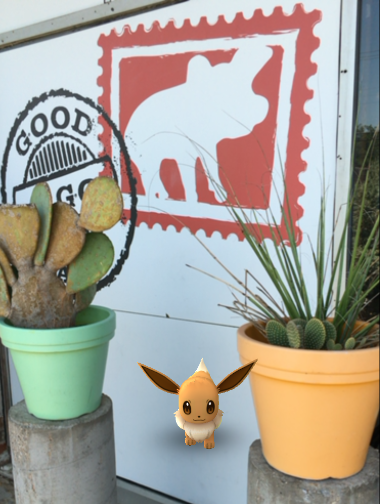 Wild Eevee spotted at Good To Go Taco in Dallas, Tx