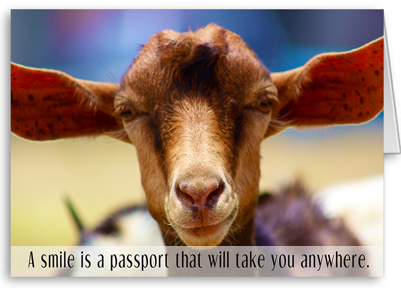 A smile is a passport that will take you anywhere