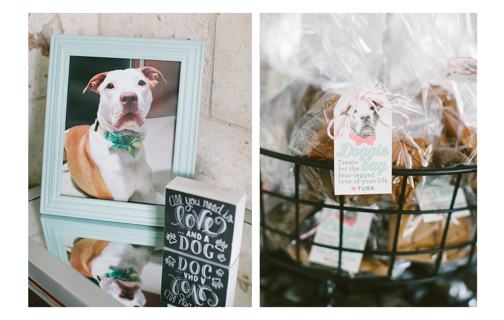 Dog treat wedding favor - Devon Design Co