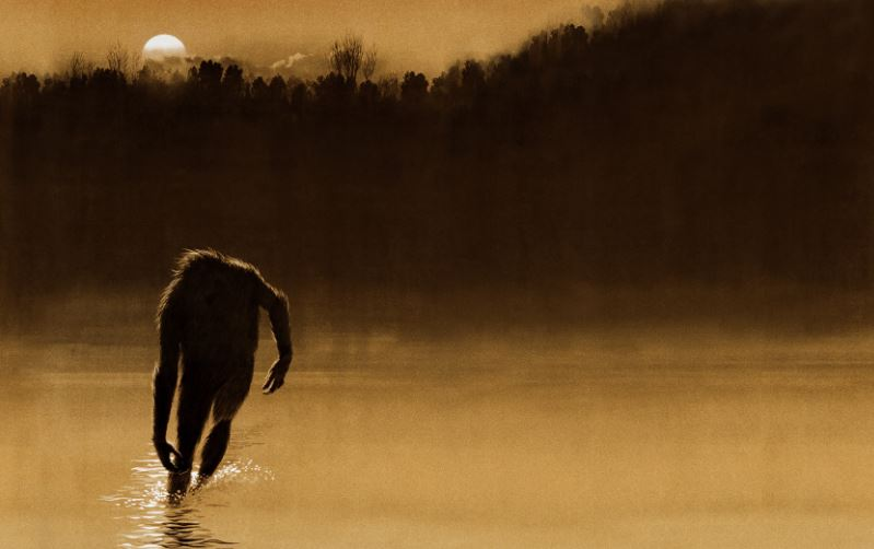 Legen of Boggy Creek.JPG