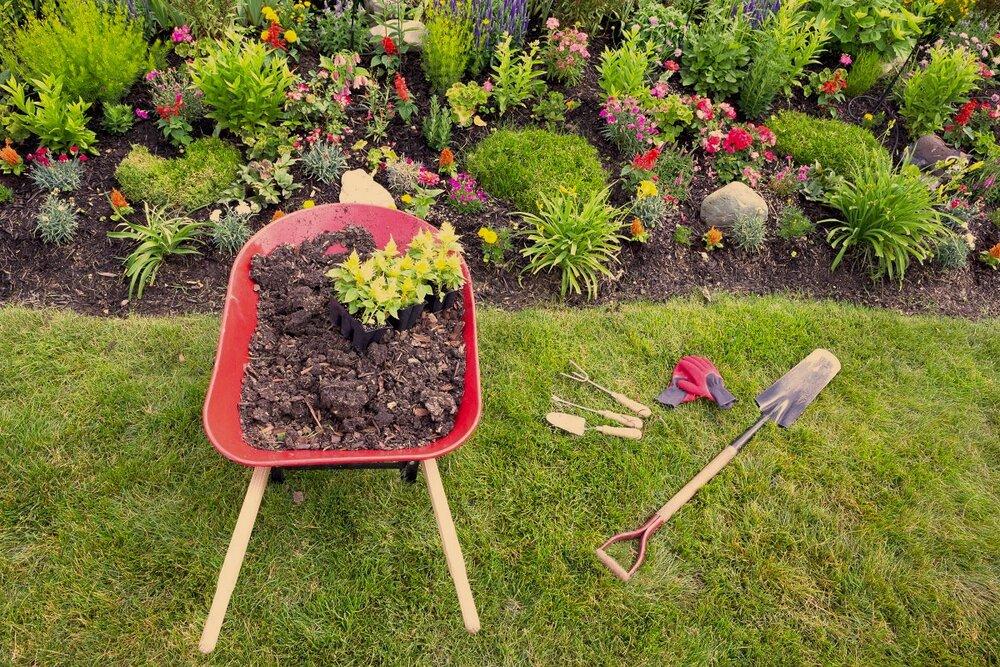 Convert Lawn to Garden in a Snap
