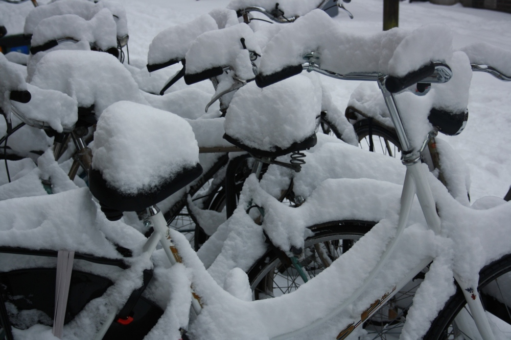 Utrecht bikes