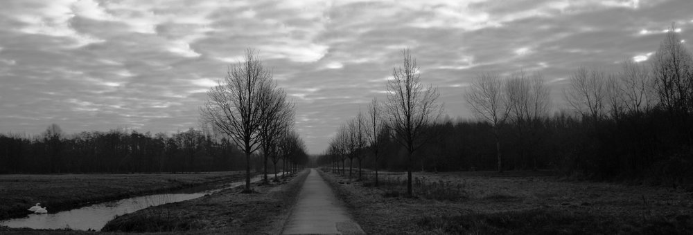 Outside Tienhoven, the Netherlands