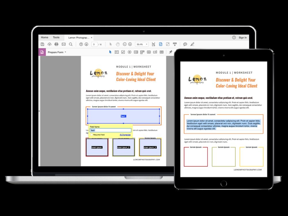 Adobe Acrobat Fillable PDF Course Workbook