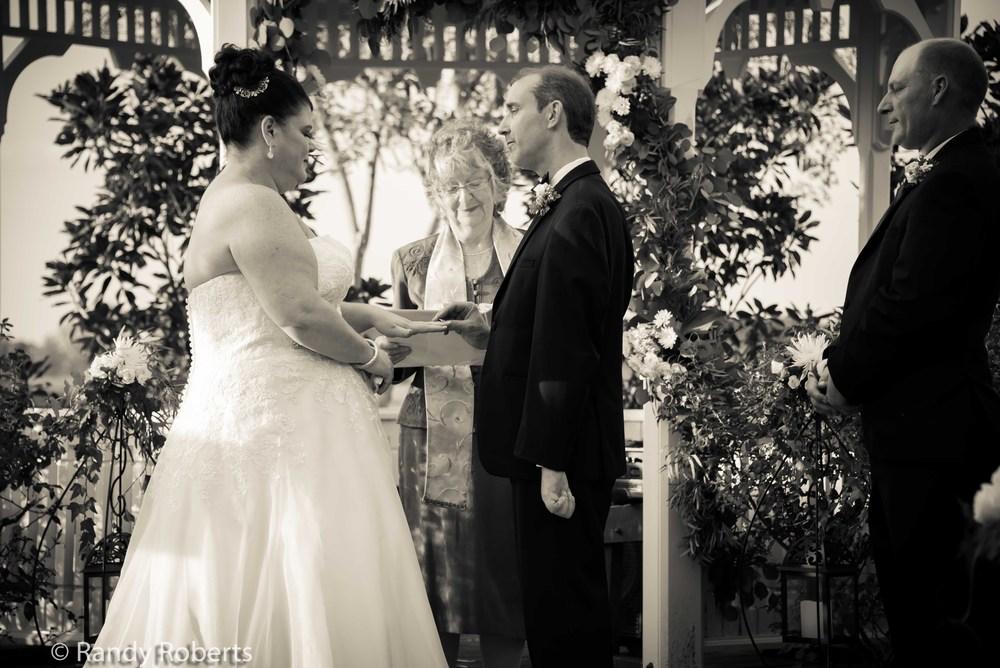 The Wedding-37.jpg