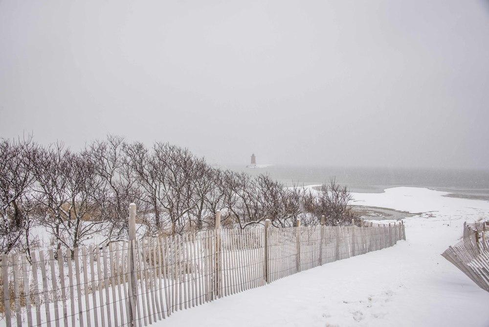 Cape Winter