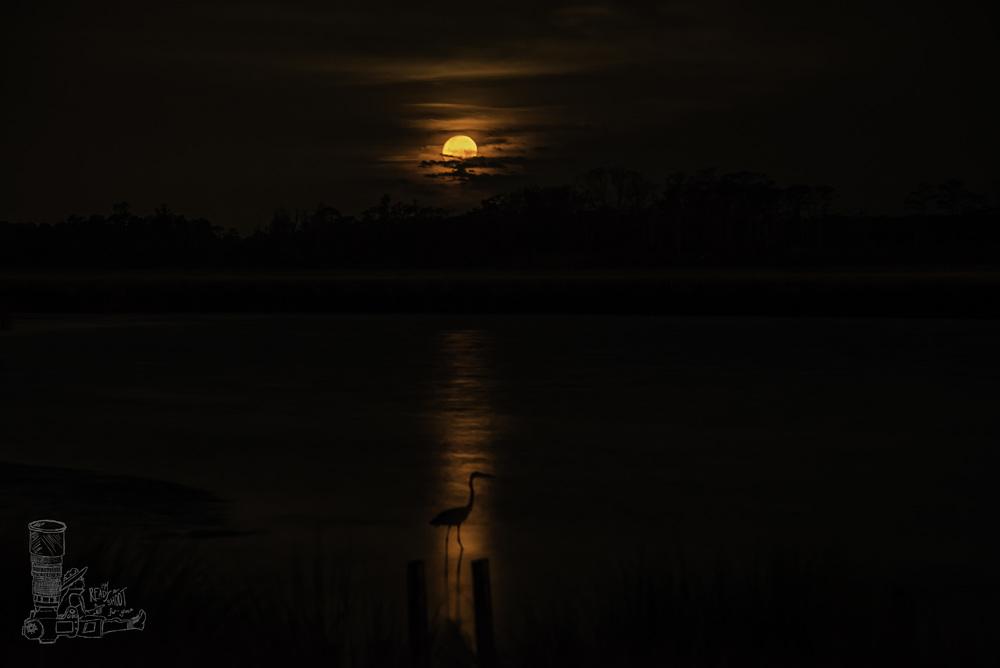 Goodbye Moon