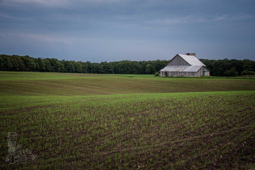 Empire Farmland