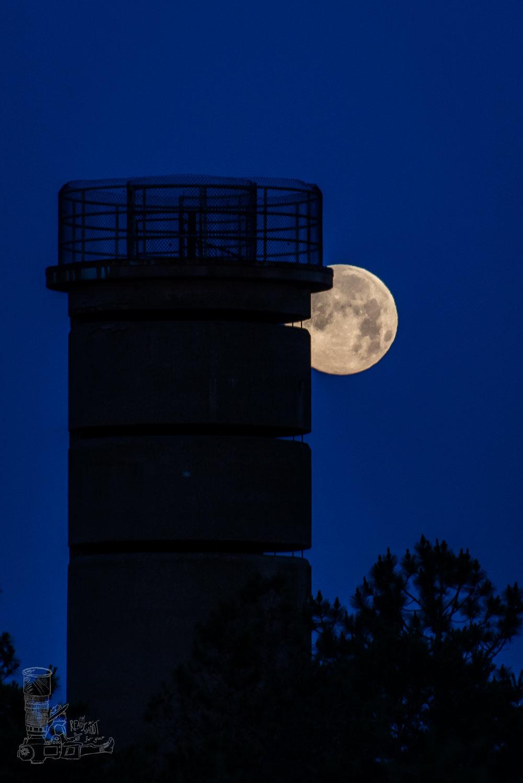 Full Moon Observation
