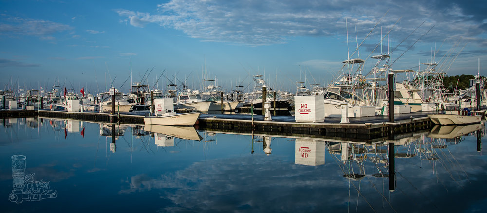 Dockside Reflections