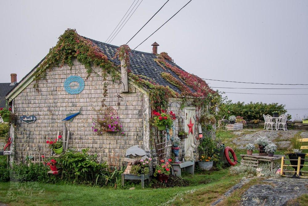 Art Shop of Blue Rocks