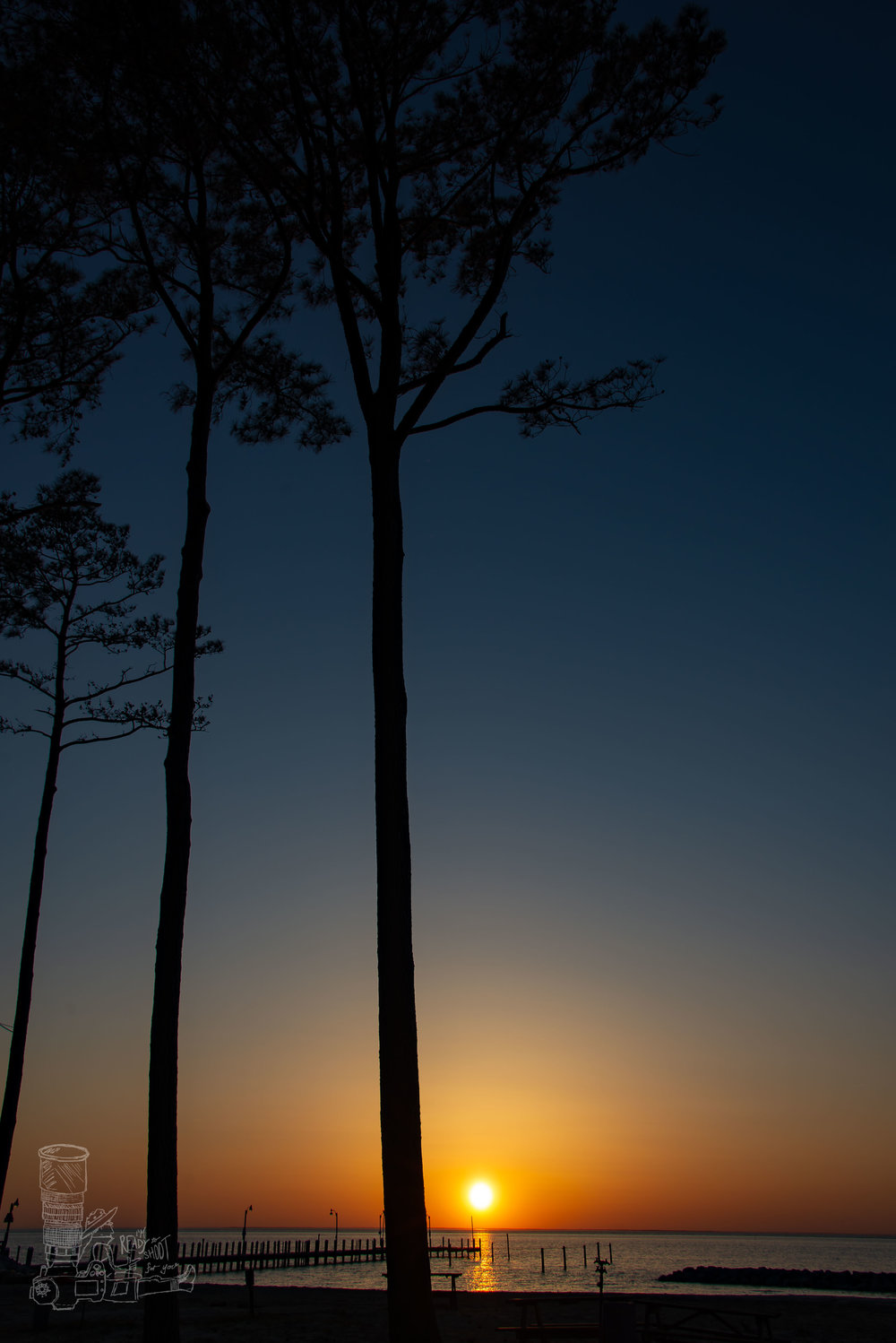 Tall Pines of Cape Charles