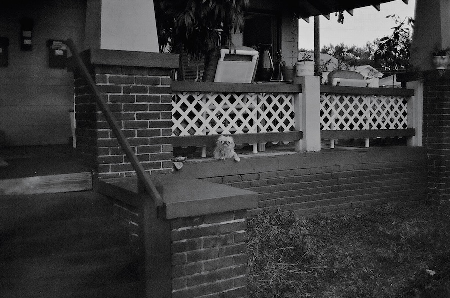 porch woof