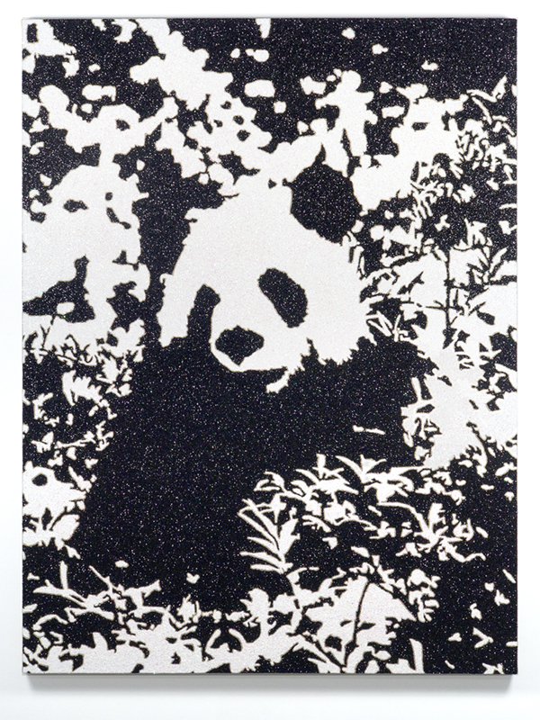 Panda in Dappled Sunlight