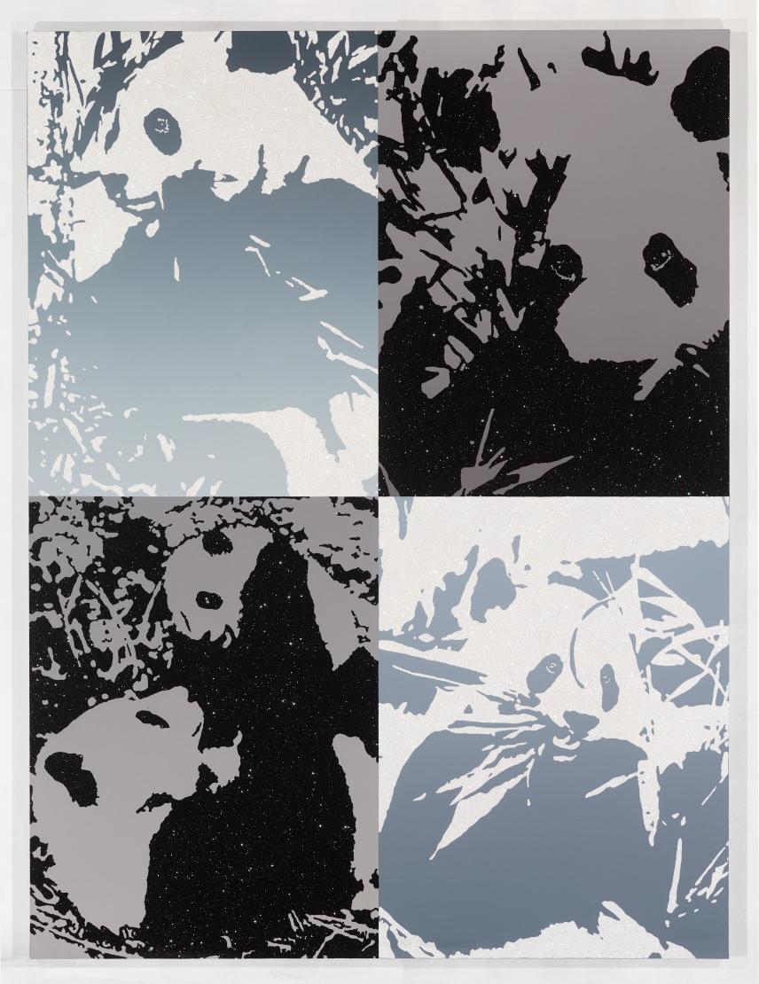 Gray Days (Pandas)
