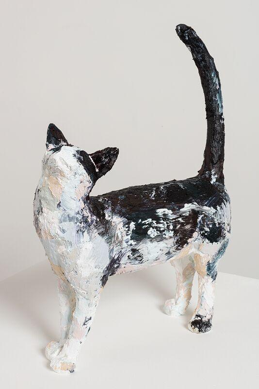 Title TBC (MDC Cat #02)