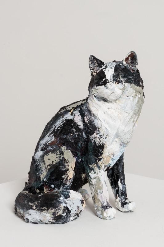 Title TBC (MDC Cat #05)