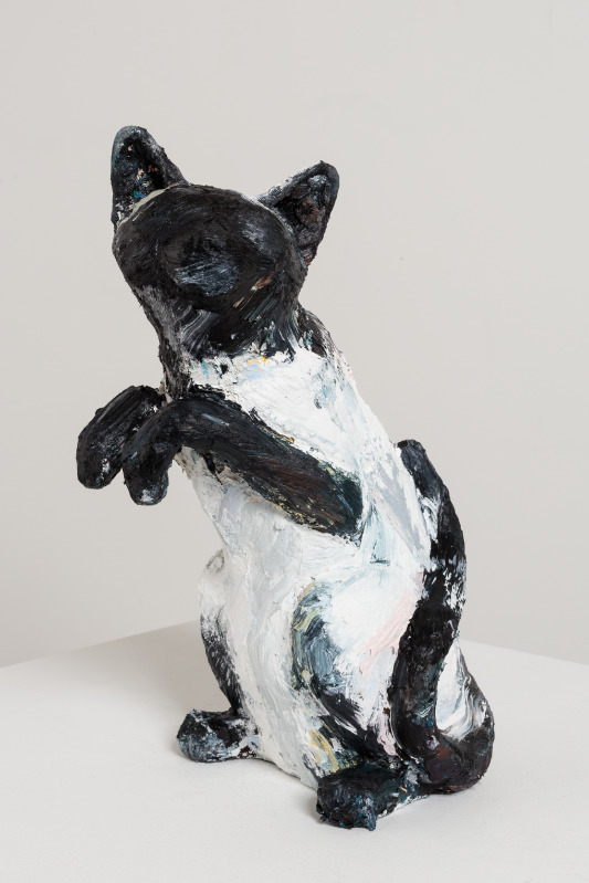 Title TBC (MDC Cat #06)