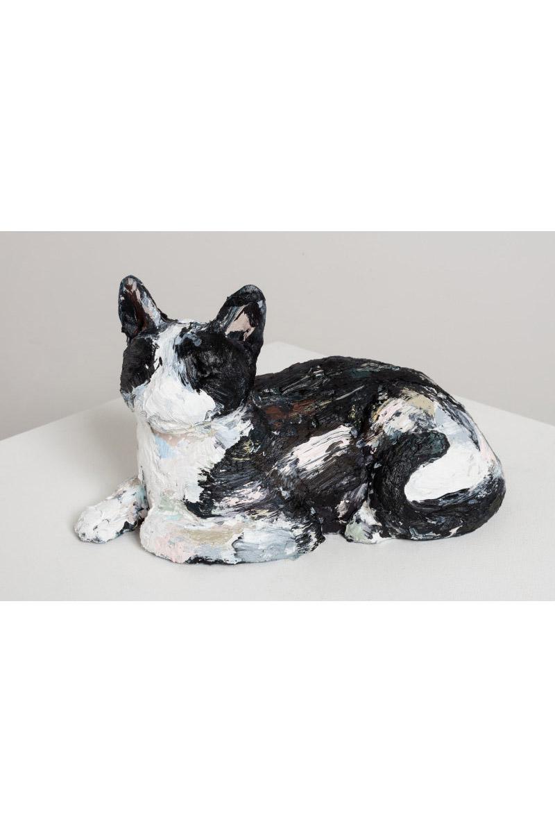 Title TBC (MDC Cat #11)