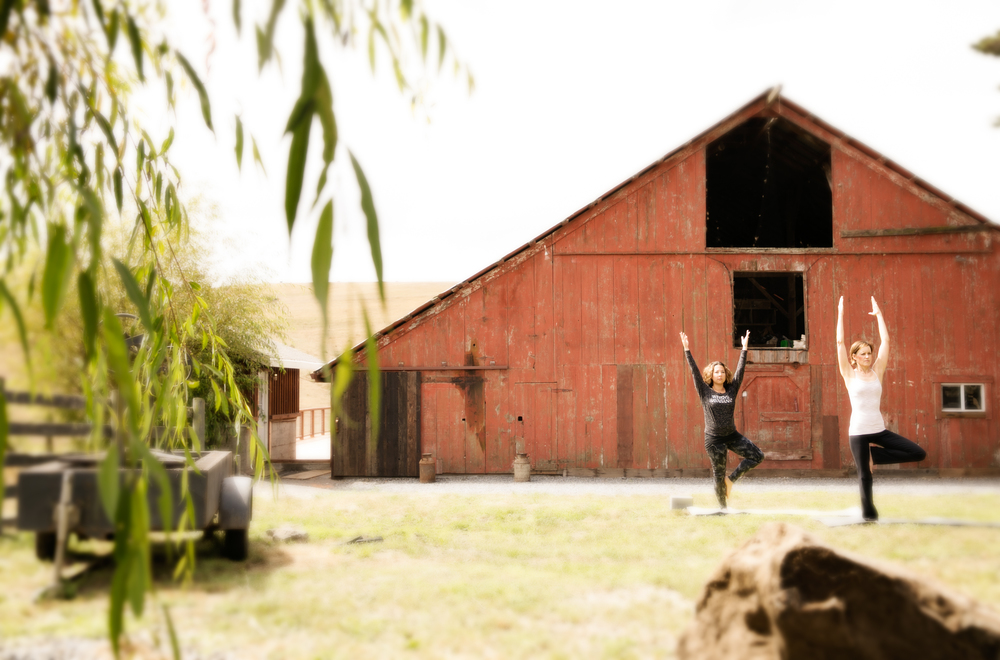 Stemple_Creek_Ranch_MALT_Yoga_Retreat