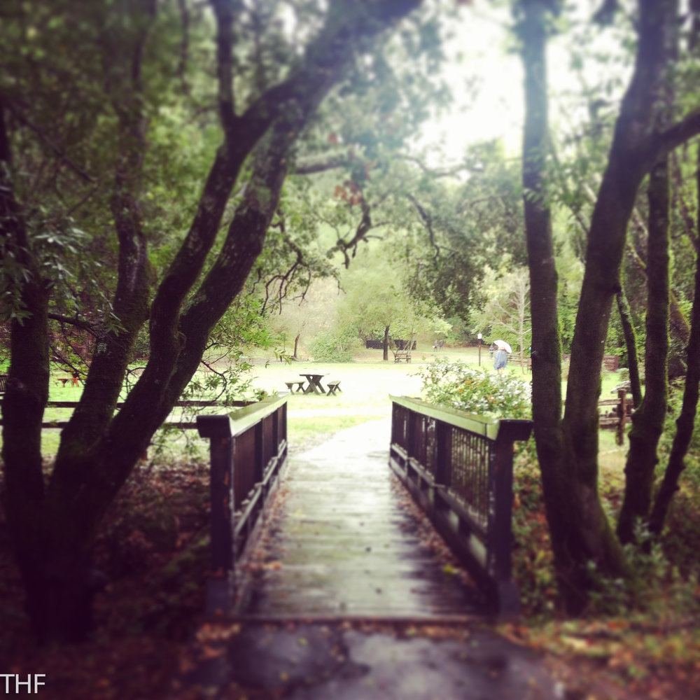 bridge0001-2.jpg