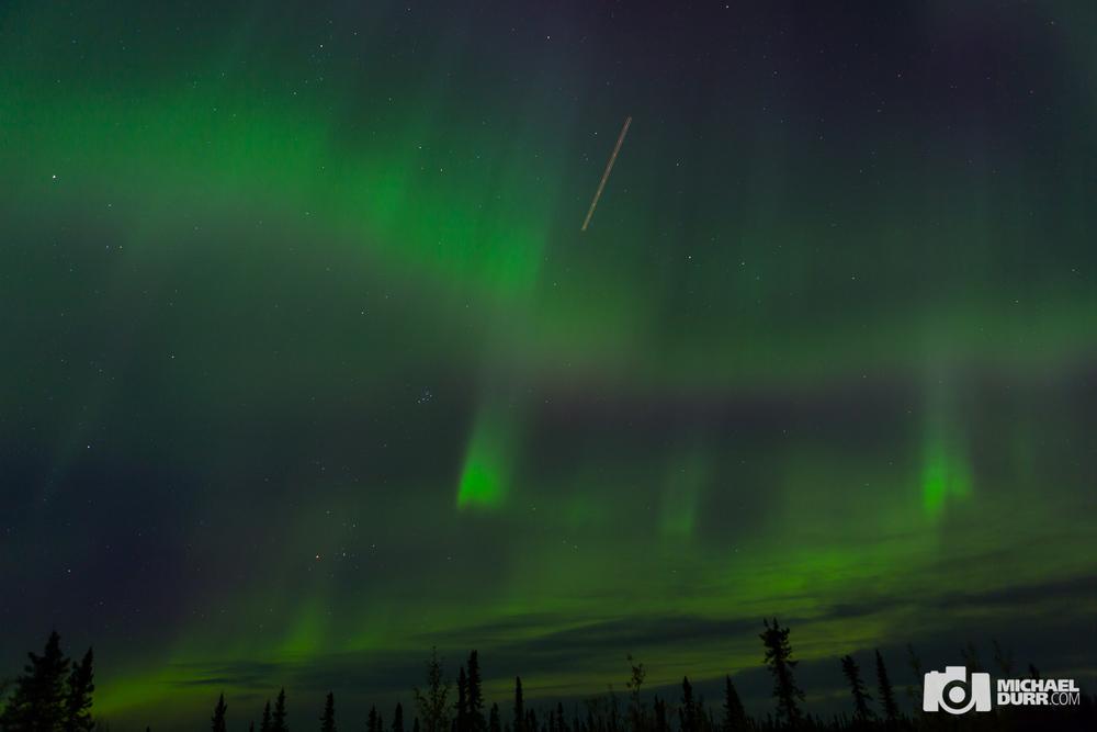 Alaska_MD_0501.jpg